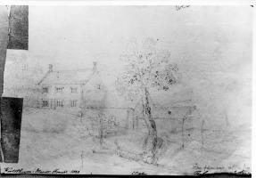 Drawing of Newton's apple tree